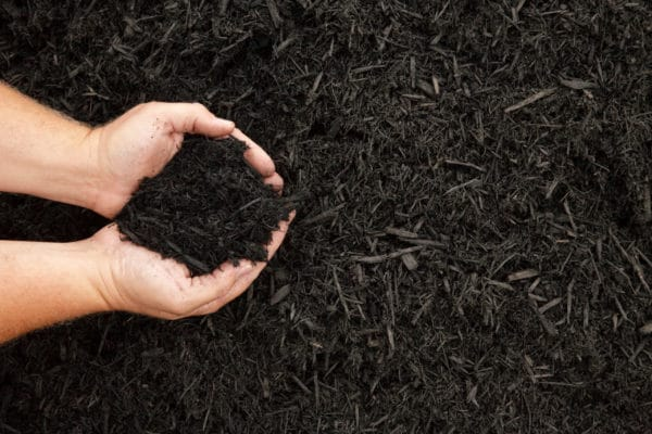 Colonial Black scaled Colonial Black Mulch