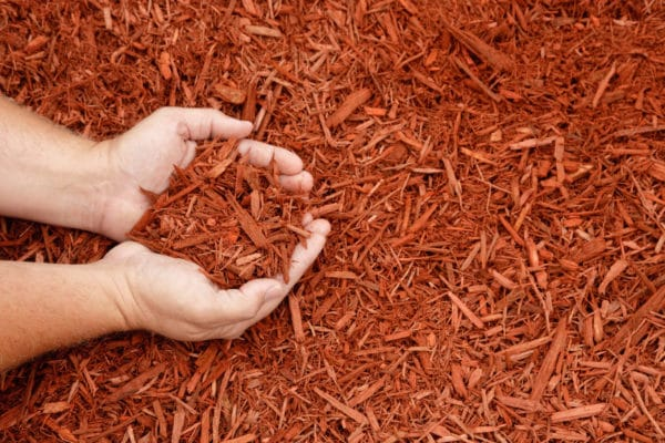 Russet Red scaled Russet Red Mulch