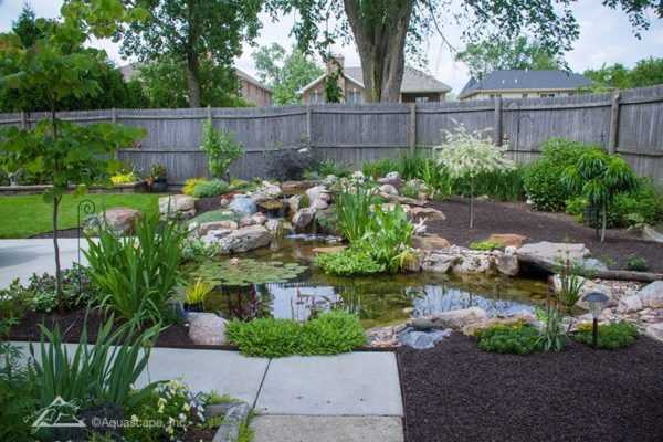 fish ponds and waterfalls