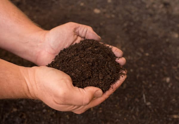Turf Grow Organic Compost